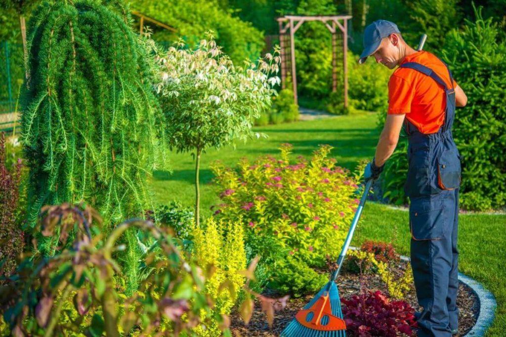 поддържане на вашата градина, Поддържане на вашата градина казанлък, поддържане на вашата градина стара загора, поддържане на вашата градина пловдив